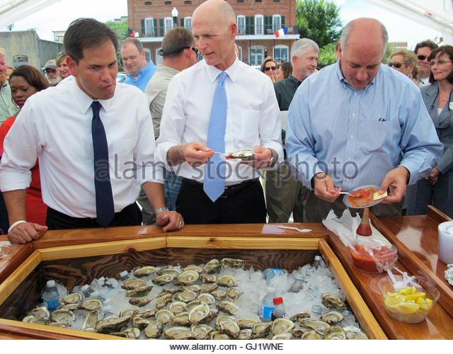 Apalachicola Oyster Stock Photos Amp Apalachicola Oyster