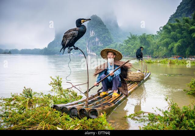 Cormorant fisherman and his bird on the Li River in Yangshuo, Guangxi, China. - Stock Image