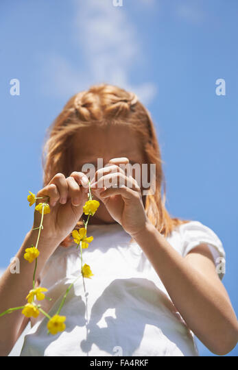 Low angle view of a girl making floral crown, Munich, Bavaria, Germany - Stock Image