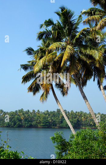 kerala village scenery stock photos amp kerala village