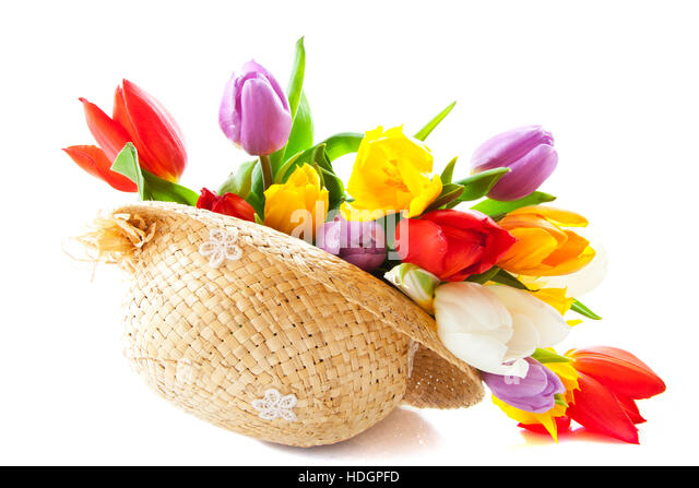 white dutch hat stock photos  u0026 white dutch hat stock images
