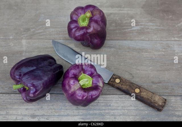 how to grow sicilian marrow cuguzza