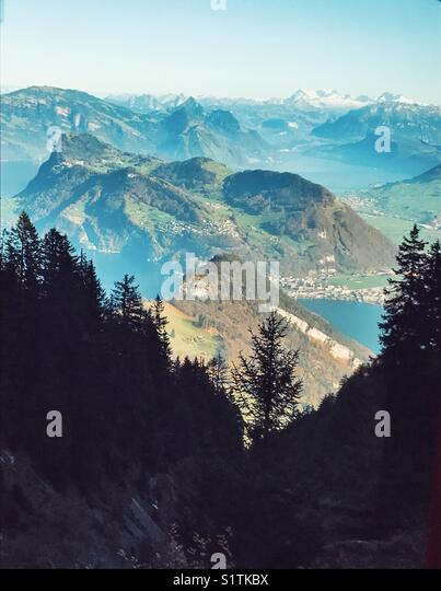 Alpine trees and mountain ranges - Stock Image