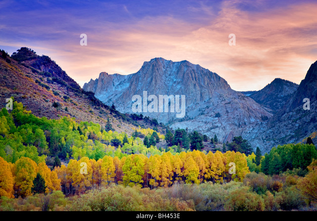 Carson Peak and fall colored aspens. California - Stock Image