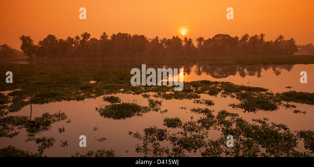 Sunrise in backwaters in Kerala , India - Stock-Bilder