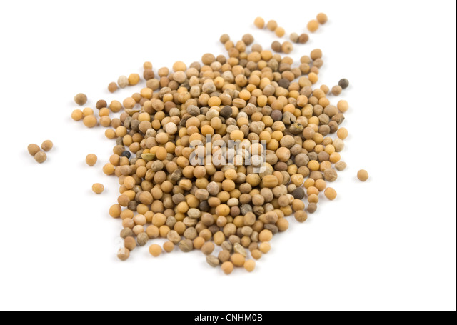 grains of mustard are isolated on white - Stock Image