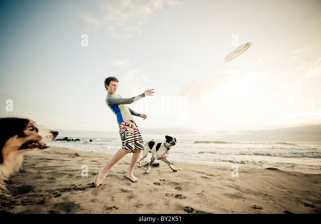 A teenage boy tosses a Frisbee for two eager dogs on a quiet beach in Mexico. - Stock Image