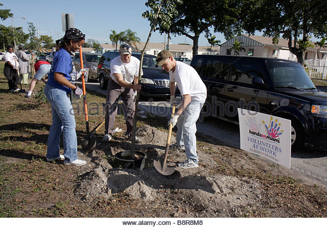 Miami Florida Liberty City Liberty Square public housing neighborhood improvement Hands On Miami volunteer Martin - Stock Image