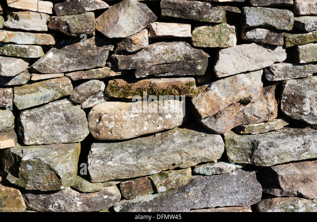 Drystone wall detail, Yorkshire Dales. - Stock Image