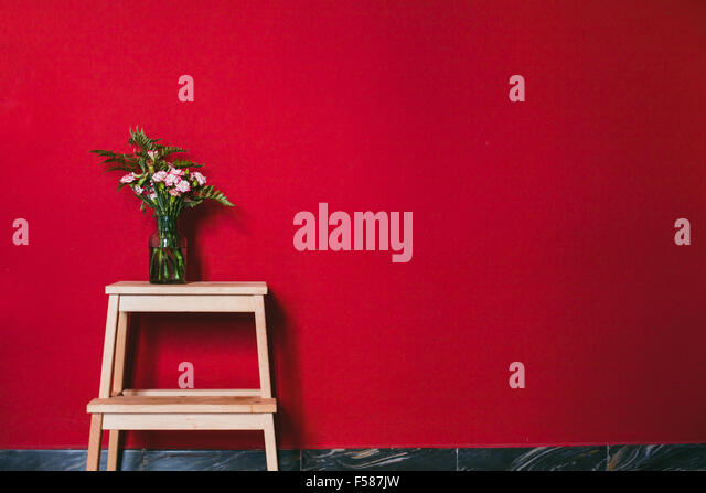simple design of interior, flowers in vase on red wall background - Stock Image