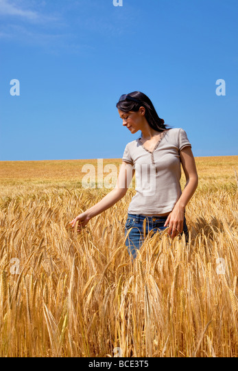 A woman in a field of golden barley - Stock Image