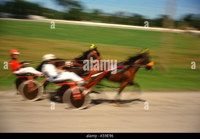 Chariot Racing - Stock Image