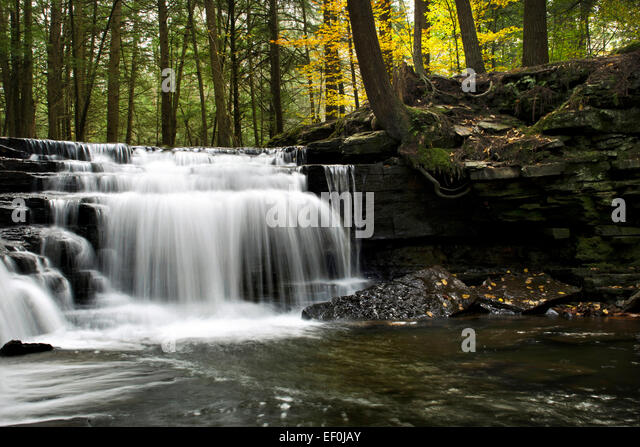 Beautiful autumn waterfall at Salt Springs State Park, Susquehanna County Franklin Forks Pennsylvania, USA. - Stock Image