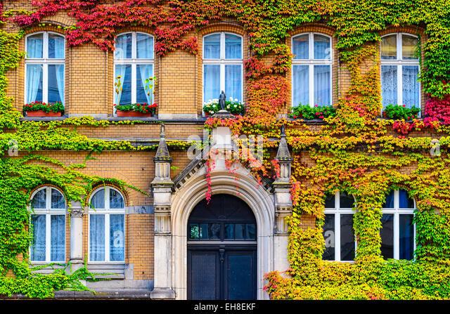 Vine covered building facade in Berlin, Germany. - Stock-Bilder