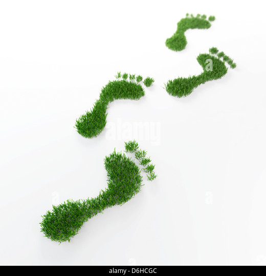 Ecological footprint, conceptual artwork - Stock Image