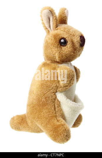 Soft Toy Kangaroo - Stock Image
