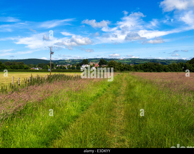 Offa's Dyke footpath towards Hay on Wye, Powys, Wales - Stock Image
