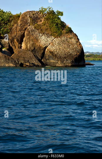 rock stone branch - photo #5
