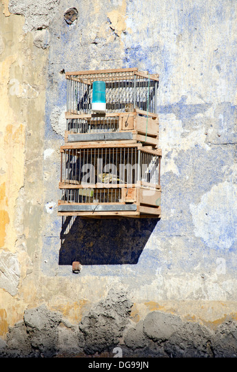bird cages at a market in Palermo - Stock Image