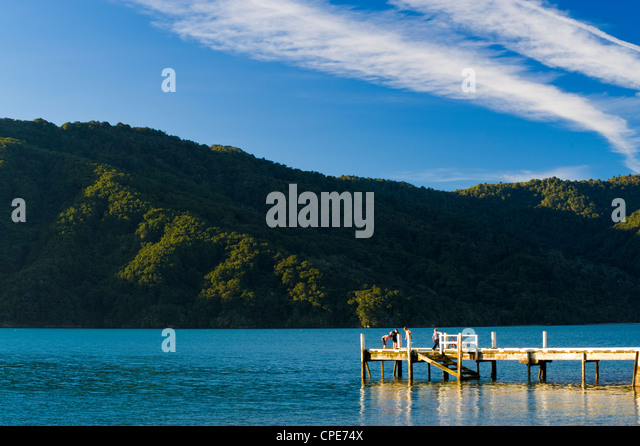 Queen Charlotte Sound, South Island, New Zealand, Pacific - Stock-Bilder