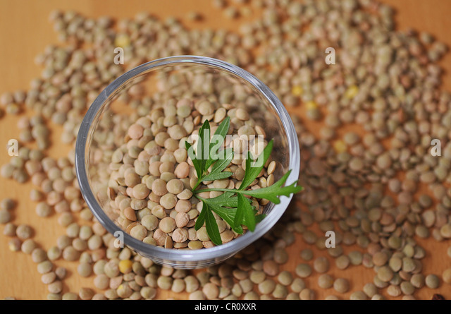 Lentils in and around a glass bowl - Stock Image