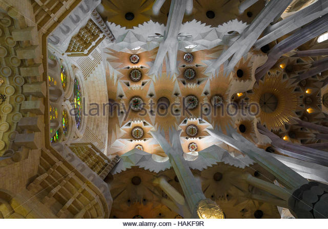 Interior of Ceiling in La Sagrada Familia in Barcelona, Spain - Stock Image