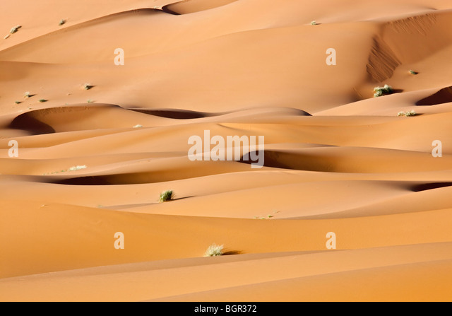 Sahara desert dunes - Stock Image