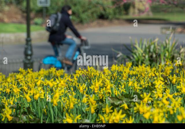 Battersea Dogs Home Bike Ride