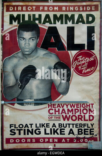 Muhammad Ali  Boxing Boxer World heavy weight Champion ( direct from the ringside ) - Stock Image