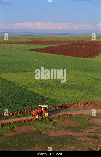 Tractor and fields near Diyarbakir in Kurdistan, Anatolia, Turkey Minor, Eurasia - Stock Image