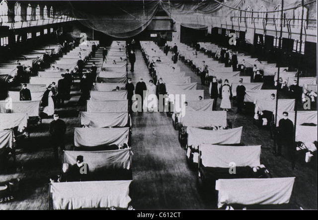 influenza 1918 flu pandemic and grade school The 1918 pandemic virus infected cells in the upper respiratory tract, transmitting easily, but also deep in the lungs, damaging tissue and often leading to viral as well as bacterial pneumonias.