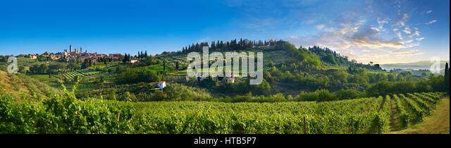 Chianti vineyards and vines of San Gimignano at sunrise, Tuscany Italy - Stock-Bilder