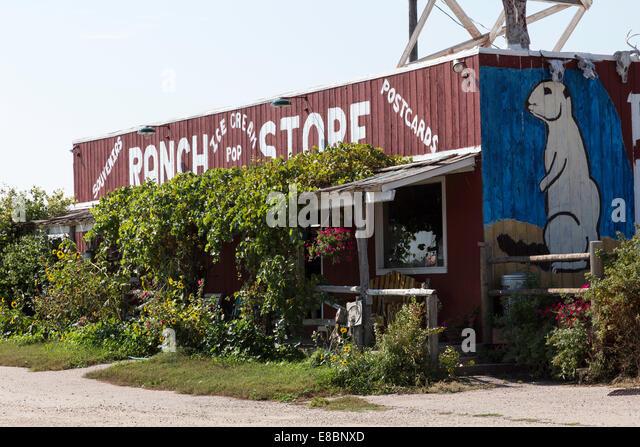 Prairie Dog For Sale California