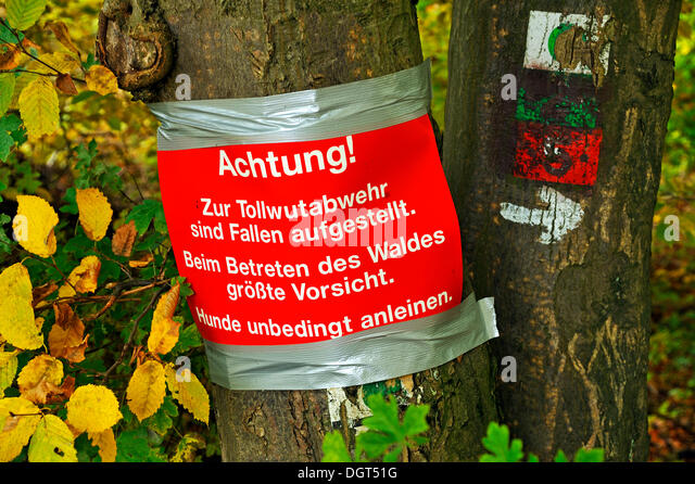 Warning sign on a tree, traps for rabies control are set, Enzenreuth, Franconian Switzerland, Middle Franconia, - Stock Image