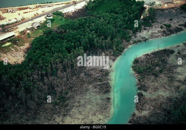 Pollution in Kalimantan, Island of Borneo, Indonesia, Southeast Asia, Asia - Stock Image