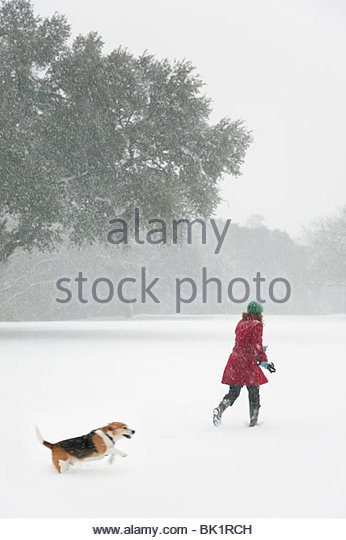 Caucasian woman walking in snow storm with dog - Stock Image