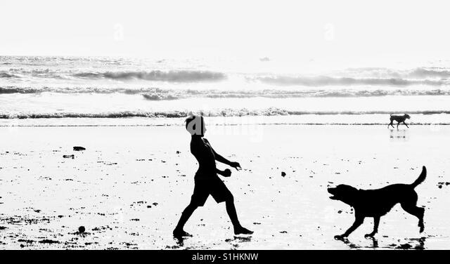 Shadow image, Dog beach, San Diego, California - Stock Image