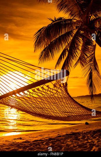 Hammock on a palm tree during beautiful sunset on tropical Fiji Islands - Stock Image