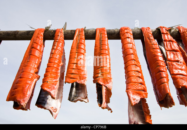 Subsistance caught Bristol Bay Sockeye salmon drying on a rack, Iliamna, Southwest Alaska, Summer - Stock-Bilder