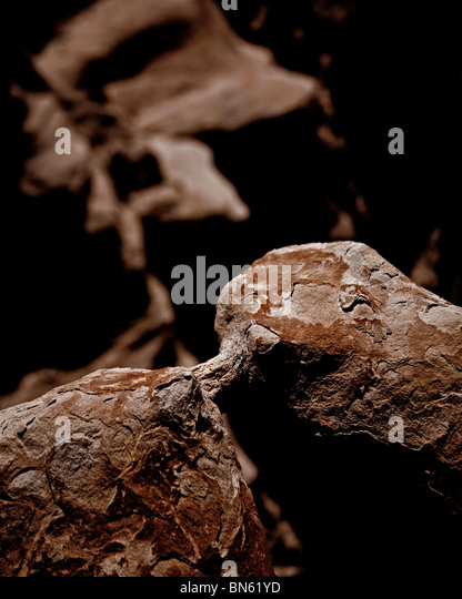Erosion in the badlands.  A careful balance of light and shadow provide an unusual backdrop for the abstract dumbbell - Stock Image
