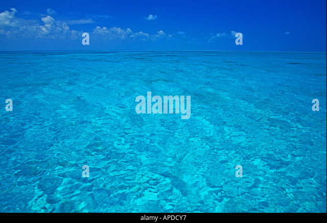 tropics tropical water crystal clear clean turquoise romantic romance white sand bottom and blue sky behind bright - Stock Image