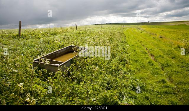 Trough uk stock photos trough uk stock images alamy for Landscape rock upland ca