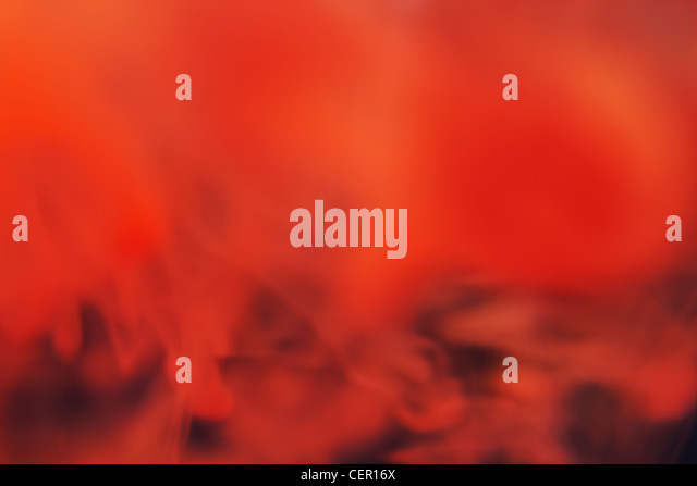 Photo of a red fog in an ox - Stock Image
