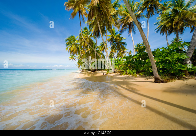Caribbean beach, tropical. - Stock Image