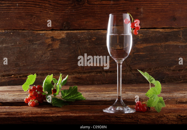 glass of red currant schnapps with red currants (Ribes rubrum) on ...