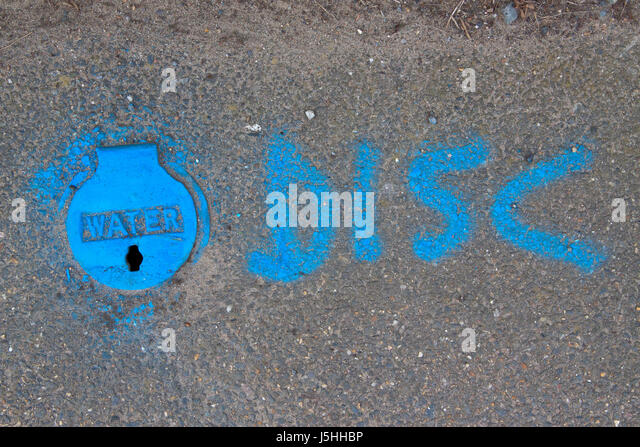Mains water supply tap cover in pavement sprayed blue - Stock Image