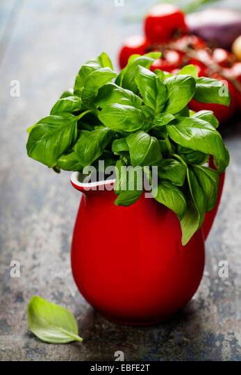 Fresh basil in red jug with ingredients. Organic food, health or cooking concept - Stock Image