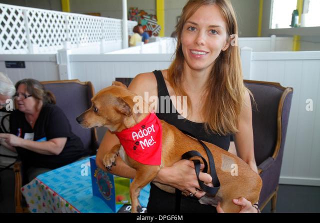 Miami Florida Wynwood Art District dog pet adoption event volunteer woman holding - Stock Image