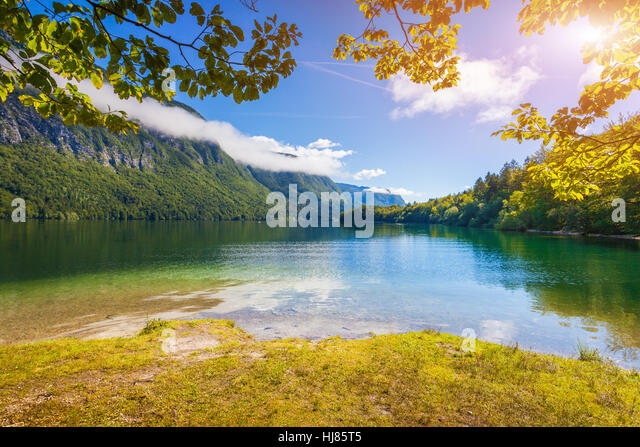 Colorful summer morning on the Bohinj lake in Triglav national park Slovenia, Alps, Europe. - Stock Image