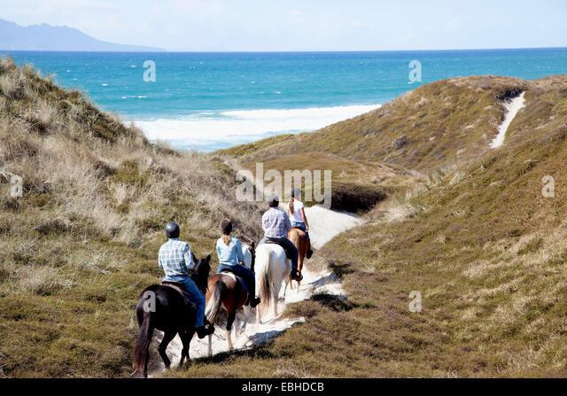 Horse riders heading down to Pakiri Beach, Auckland, New Zealand - Stock-Bilder